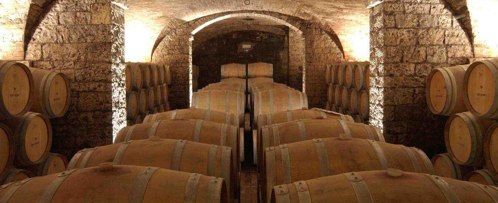chianti botti di vino